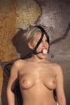 Mondknevel met houten bal en hoofdband